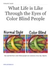 What Life Is Like Through The Eyes Of Color Blind People