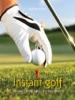 Instant golf