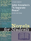 A Study Guide For John Knowless A Separate Peace