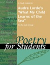 A Study Guide For Audre Lordes What My Child Learns Of The Sea