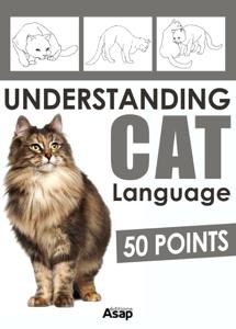 Understanding Cat Language - 50 Points Book Review