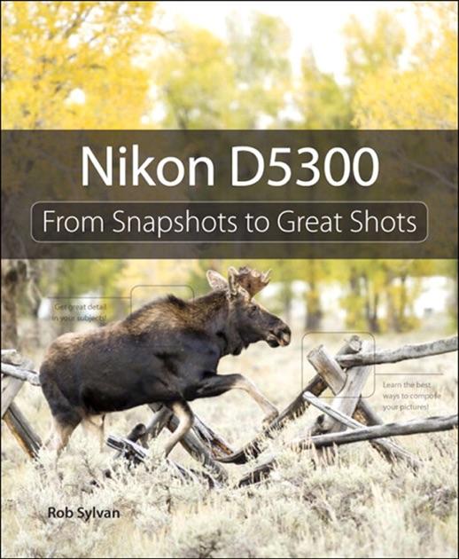 Snapshots from great d750 pdf to nikon shots