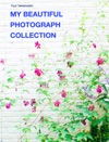 MY BEAUTIFUL PHOTOGRAPHCOLLECTION
