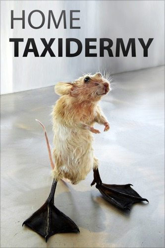 Authors and Editors of Instructables - Home Taxidermy