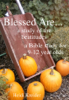 Heidi Kreider - Blessed Are... a Bible study of the Beatitudes for 9-12 year olds  artwork