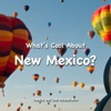 Whats Cool About New Mexico