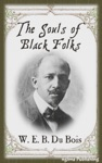 The Souls Of Black Folk Illustrated  FREE Audiobook Download Link
