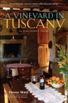 A Vineyard In Tuscany A Wine Lovers Dream