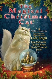 The Magical Christmas Cat PDF Download