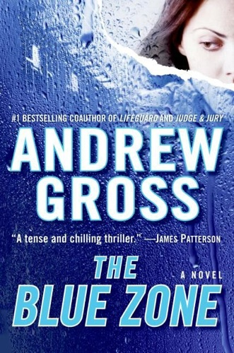 Andrew Gross - The Blue Zone