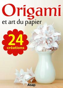 Origami et art du papier Book Review