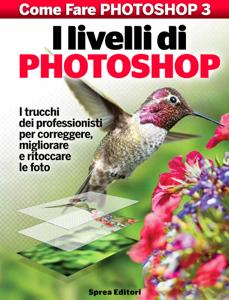 I livelli di Photoshop Copertina del libro