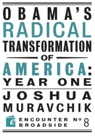 OBAMAS RADICAL TRANSFORMATION OF AMERICA: YEAR ONE
