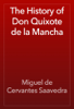 Miguel de Cervantes Saavedra - The History of Don Quixote de la Mancha artwork