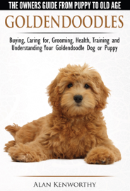 Goldendoodle: The Owners Guide from Puppy to Old Age - Choosing, Caring for, Grooming, Health, Training and Understanding Your Goldendoodle Dog