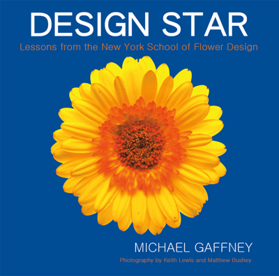 Design Star - Michael Gaffney book