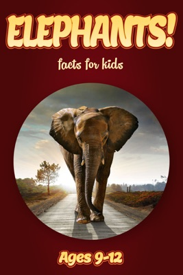 Elephant Facts For Kids 9-12