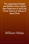 The Suppressed Gospels And Epistles Of The Original New Testament Of Jesus The Christ Volume 3 Infancy Of Jesus Christ