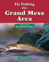 Fly Fishing The Grand Mesa Area