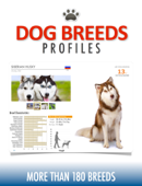 Dog Breeds Profiles