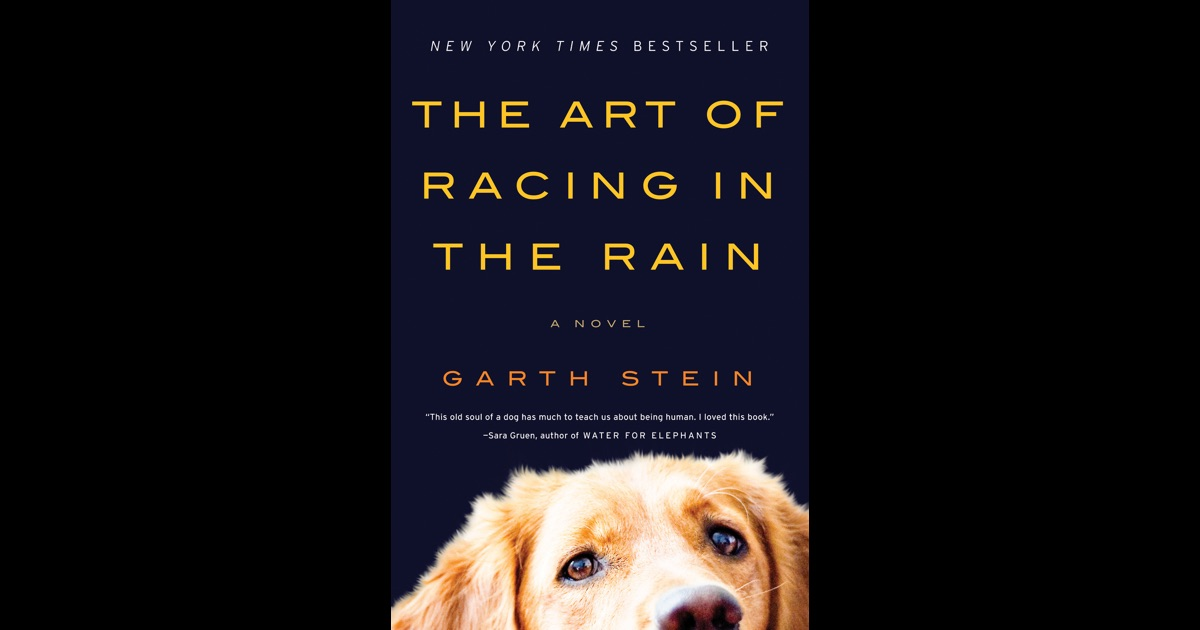 The Art Of Racing In The Rain: The Art Of Racing In The Rain By Garth Stein On IBooks