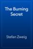 Stefan Zweig - The Burning Secret artwork