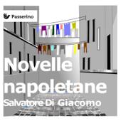 Novelle napoletane Book Cover