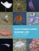 NEPTUNE Canada - Marine Life Field Guide illustration