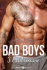 Bad Boys – 3 erotikromane