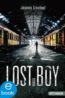 Johannes Groschupf - Lost Boy artwork