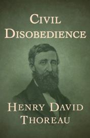 Civil Disobedience book