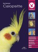 Calopsitte