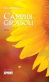 CAMPI DI GIRASOLI