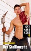 Gay Hardcore 10: Der Stallknecht