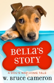 Bella S Story