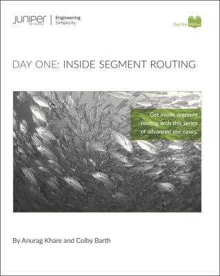 Day One: Inside Segment Routing