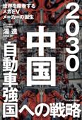 2030 中国自動車強国への戦略 世界を席巻するメガEVメーカーの誕生 Book Cover