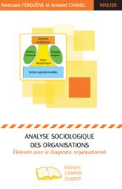 Analyse sociologique des organisations