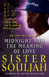 Midnight and the Meaning of Love Book Cover