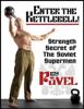 Pavel Tsatsouline - Enter The Kettlebell! bild