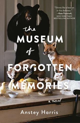 Anstey Harris - The Museum of Forgotten Memories