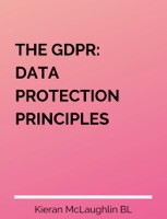 THE GDPR: DATA PROTECTION PRINCIPLES