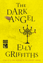 The Dark Angel book
