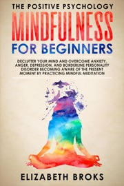 Mindfulness For Beginners Declutter Your Mind And Overcome Anxiety Anger Depression And Borderline Personality Disorder Becoming Aware Of The Present Moment By Practicing Mindful Meditation