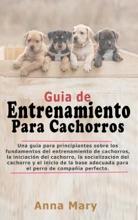 Guía De Entrenamiento Para Cachorritos
