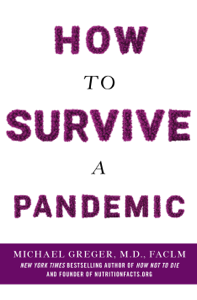 How to Survive a Pandemic Book Cover