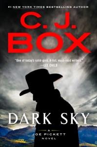 Dark Sky Book Cover