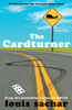 Louis Sachar - The Cardturner artwork