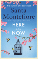 Santa Montefiore - Here and Now artwork