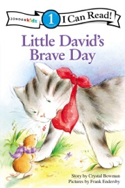 Little David S Brave Day